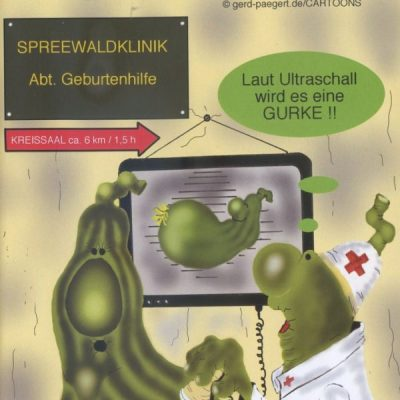 Spreewaldgurke_02
