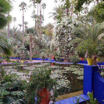 Das Majorelle-Blau dominiert den prächtigen Garten