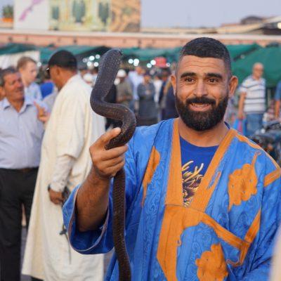Schlangenbeschwörer auf dem Platz der Gaukler (Djemaa el Fna) in Marrakesch