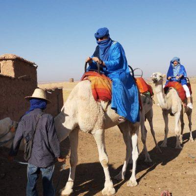 Kamelreiten im Atlas-Gebirge